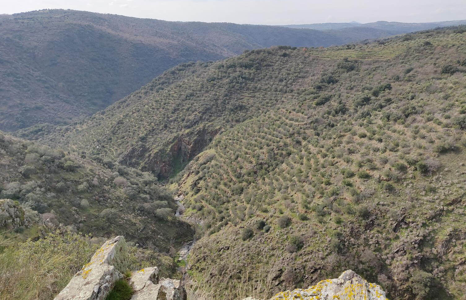 Mirador-Mesa-del-Conde